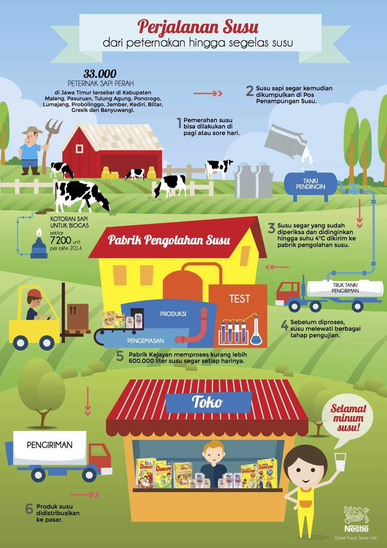 Infographic Dairy